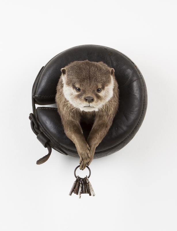 09_Otter